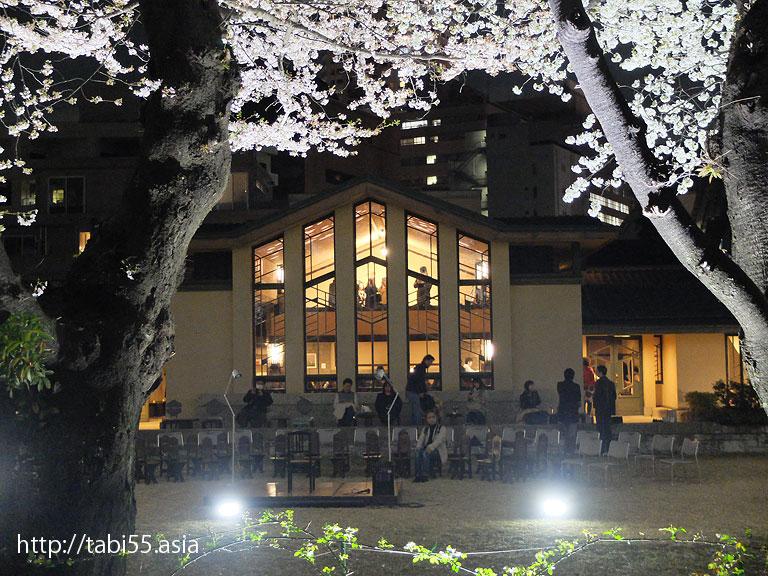 自由学園明日館の桜のライトアップ
