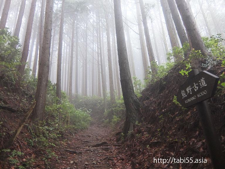 熊野古道/中辺路(和歌山県田辺市)