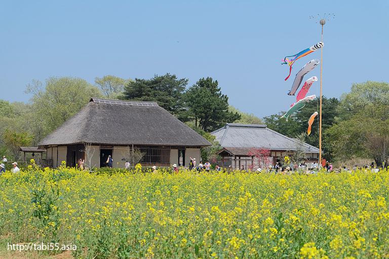 国営ひたち海浜公園の古民家(茨城県)