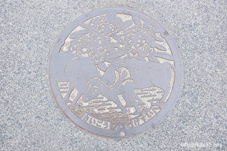 隠岐の島町(島後)のマンホール