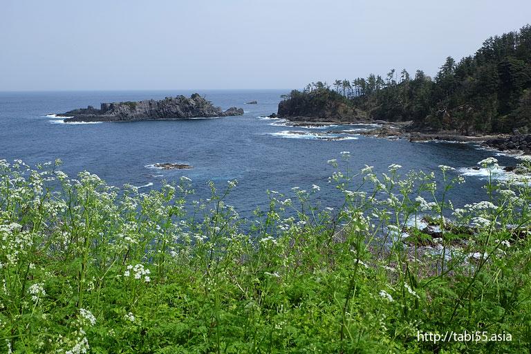 県道47号線|隠岐の島町(島後)の風景
