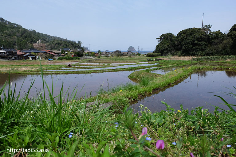 段々畑越しの浄土ヶ浦|隠岐の島町(島後)の風景