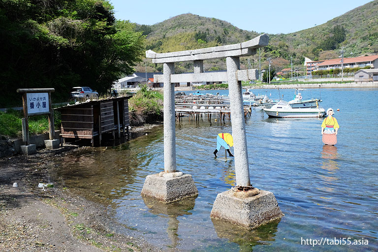 イカ寄せの浜(島根県)/Beach squid gather(Shimane)