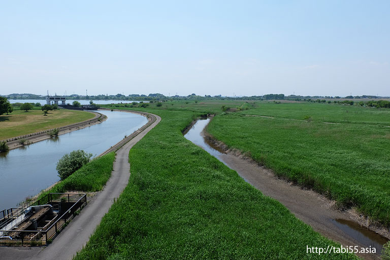 渡良瀬遊水池(栃木県)/Watarase flood control basin (Tochigi)