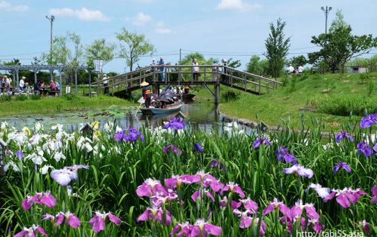 水郷佐原水生植物園(千葉県香取市)