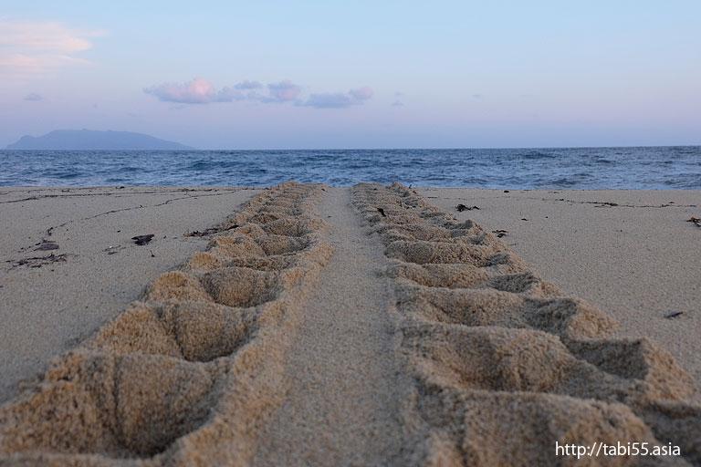 ウミガメの足跡@永田いなか浜(屋久島)