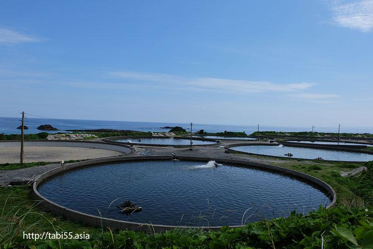 屋久島の巨大水槽