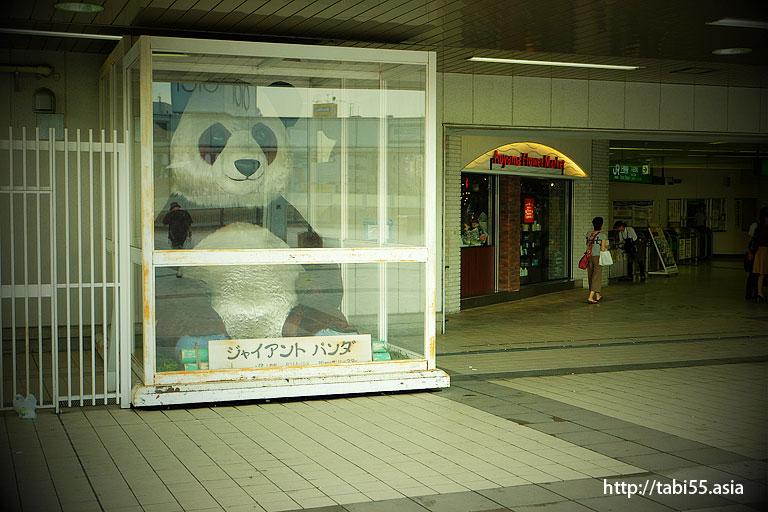 ンダ橋のジャイアントパンダ/Giant Panda of Panda Bridge