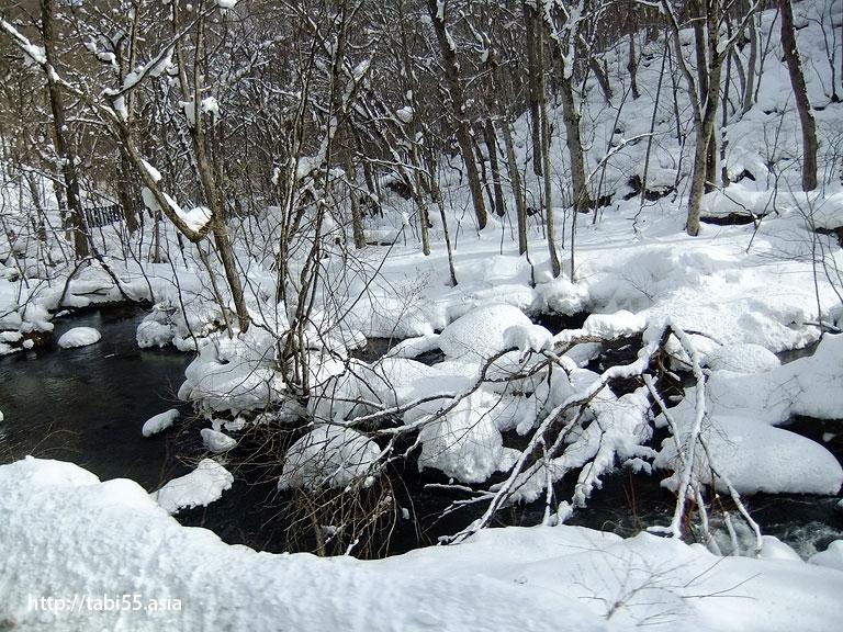 冬のおいらせ渓流