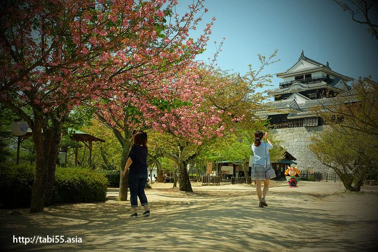 松山城(松山観光モデルコース)