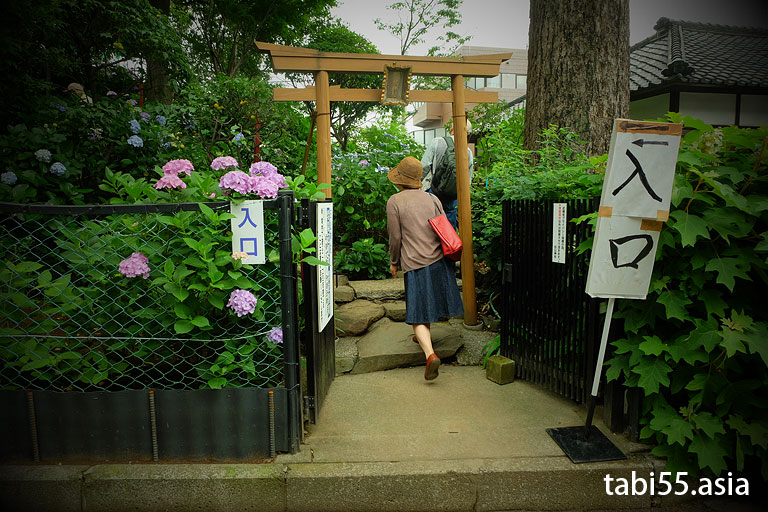 富士塚@白山神社(東京都文京区)
