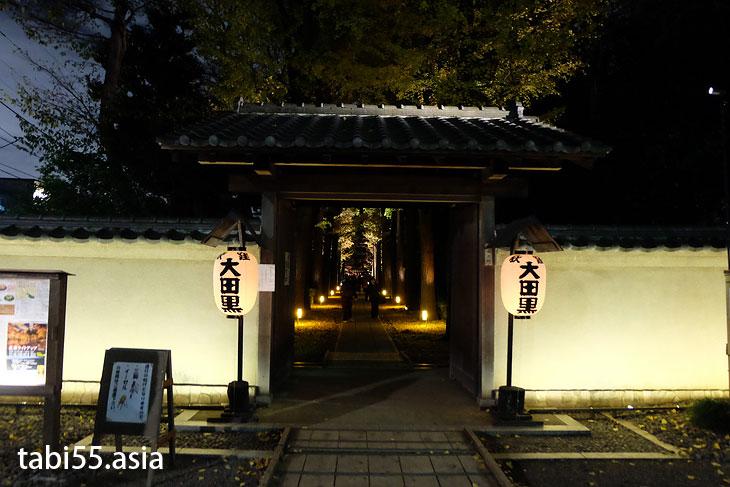 新宿から20分!大田黒公園の紅葉ライトアップ(東京都杉並区)