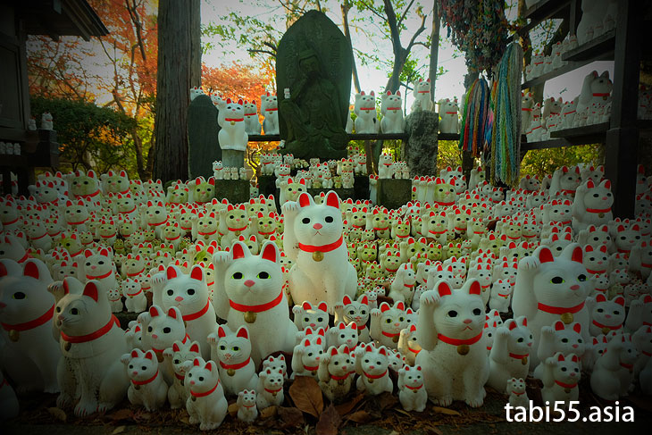 招き猫がてんこ盛り!豪徳寺(東京都世田谷区)