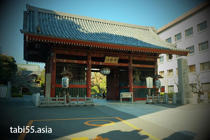 護国寺で「音羽富士」登山(東京都文京区)