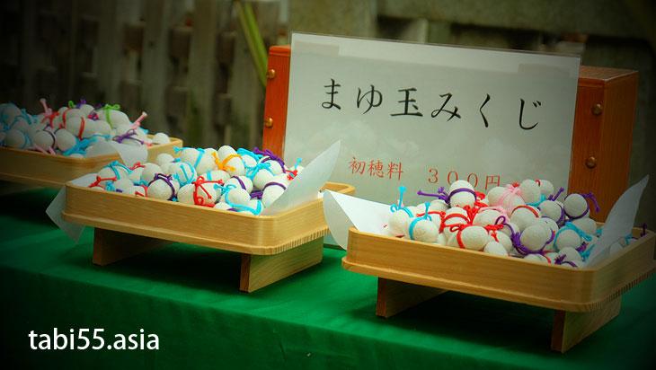 小野照崎神社の「お山開き」で「下谷坂元富士」に登ってきた(東京都台東区)
