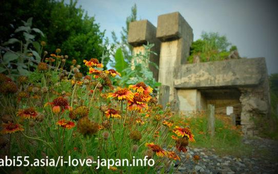 「特攻花」と戦闘指揮所跡@喜界島の観光!行ってよかった【おすすめ】