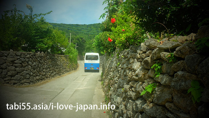 Aden coral stone wall@Travel by ferry on the Amami Islands (archipelago)【7 nights 8 days】 model course(Kagoshima)