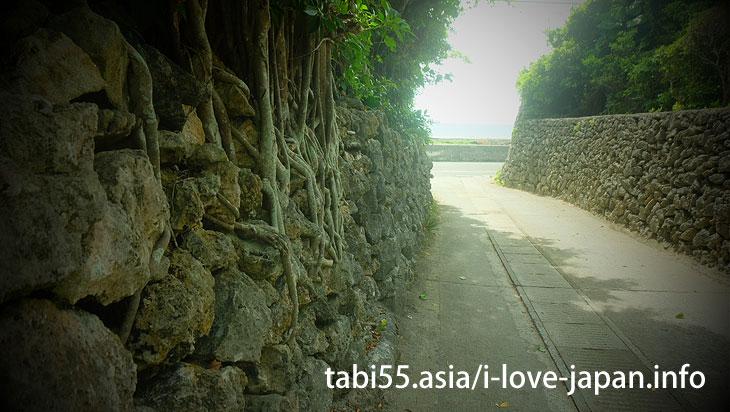 Aden coral stone wall(Kikaijima)