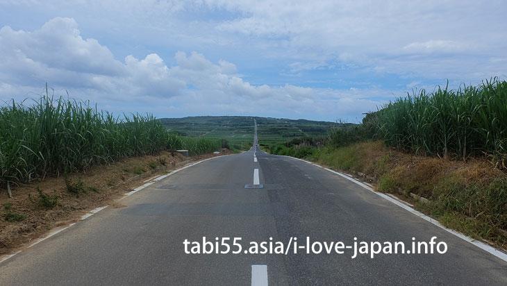 空への滑走路!?さとうきびの1本道@喜界島の観光!行ってよかった【おすすめ】