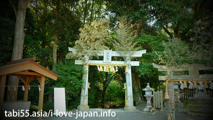"Visit the main hall and the memorial monument|Shinto shrine+huge camphor tree ""Ohkusu""(Takeo,Saga)"