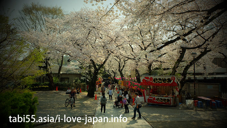 Houmyo-ji Temple | Ikebukuro Station【East Exit】Sakura's sightseeing within walking distance