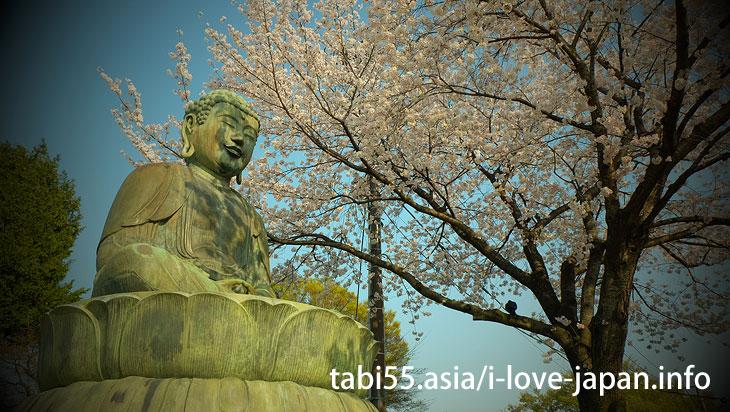 Gokokuji Temple (4 minutes by Yurakucho line from Ikebukuro station)