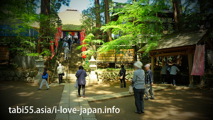 The main hall (Kannon-do) is also an important cultural property of the country/Shiofune Kannon-ji Temple' Azaleas(Ome,Tokyo)