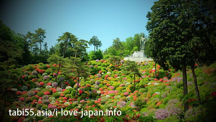 While watching the azalea, worship Kannona/Shiofune Kannon-ji Temple' Azaleas(Ome,Tokyo)